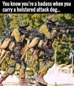 Read more about the article You know you're a badass when you carry a holstered attack dog…